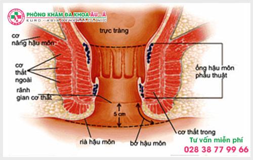 Cẩn trọng với những triệu chứng rò hậu môn