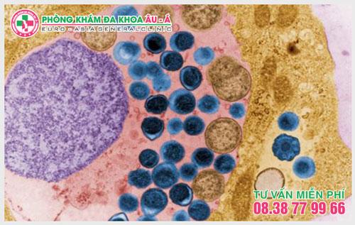 Giải đáp những thắc mắc về bệnh Chlamydia