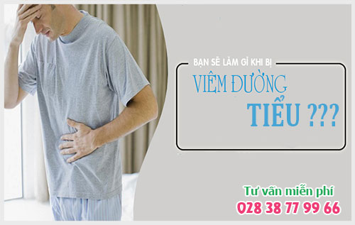 Bệnh viêm đường tiểu ở nam giới